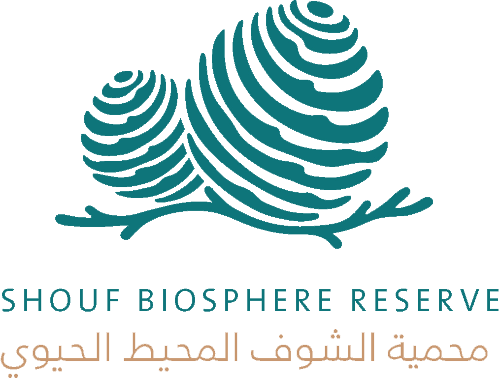 Middle East, biosphere reserve