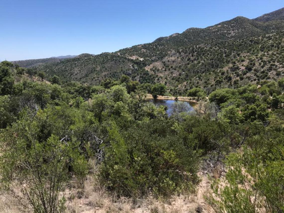 San Fernando ranch