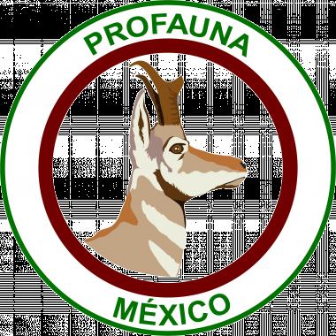 Mexico, wildlife