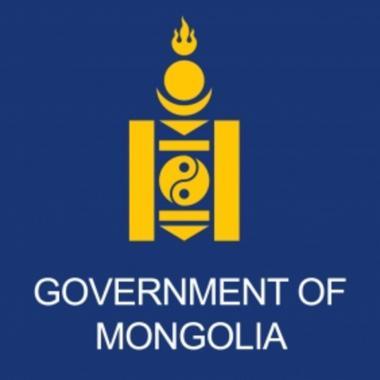 governmental organization