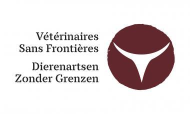 VSFB logo